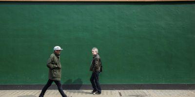 44 - Green Wall (5)