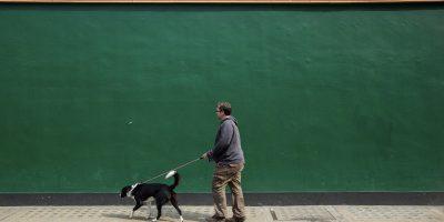 45 - Green Wall (6)